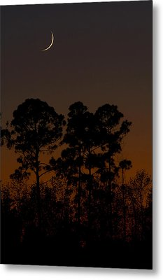 Metal Print featuring the photograph The Fingernail Moon by Dan Wells