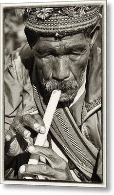 The Flute Metal Print by Skip Nall