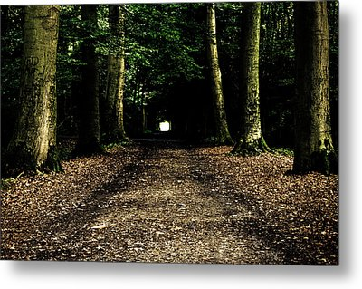 The Forest Tunnel Metal Print by Justin Albrecht