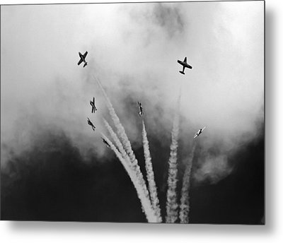 Metal Print featuring the photograph The Freedom Of The Sky by Nick Mares
