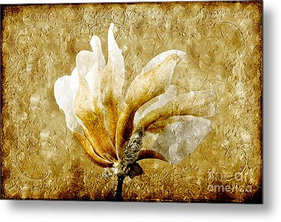 The Golden Magnolia Metal Print by Andee Design