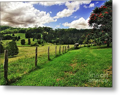 The Green Green Grass Of Home Metal Print by Kaye Menner