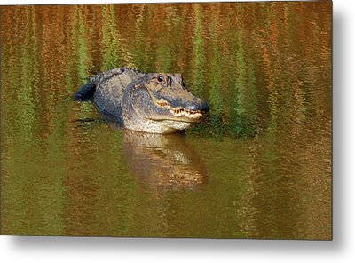 The Grin Metal Print by Kathy Gibbons