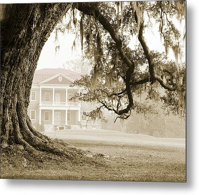 The Guardian Tree Metal Print