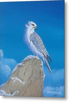 The Gyr Falcon Metal Print by Michael Allen
