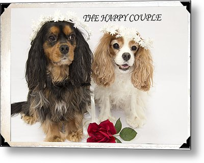 The Happy Couple Metal Print by Daphne Sampson