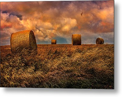 The Hayfield Metal Print by Chris Lord
