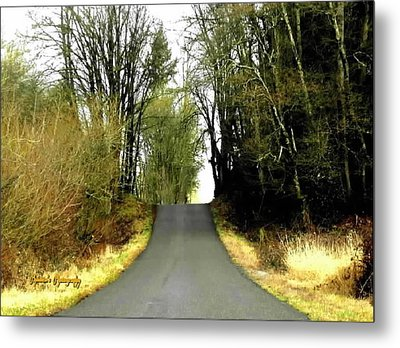 Metal Print featuring the photograph The High Road by Sadie Reneau