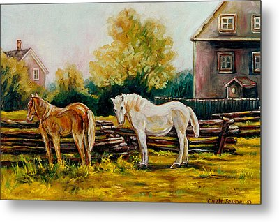The Horse Ranch Eastern Townships Quebec Metal Print by Carole Spandau