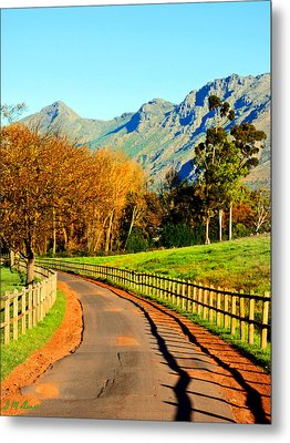 The Journey Metal Print by Michael Durst