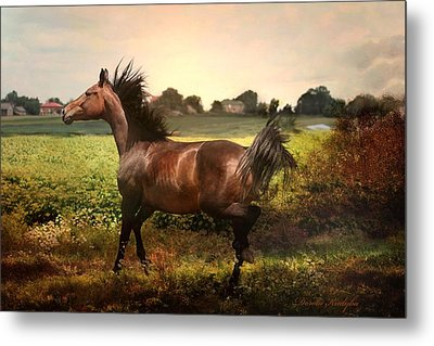 Metal Print featuring the photograph The Joy Of Spring by Dorota Kudyba