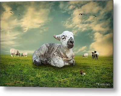 The Lamb Metal Print
