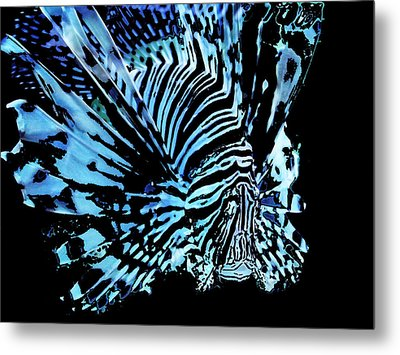 The Lionfish 2 Metal Print by Robin Hewitt