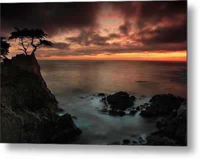 The Lone Cypress Observes A Pebble Beach Sunset Metal Print by Dave Sribnik