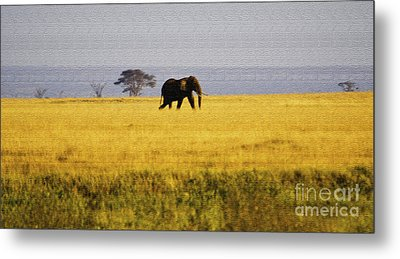 The Lone Elephant Metal Print by Pravine Chester