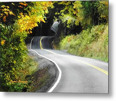 Metal Print featuring the photograph The Low Road by Sadie Reneau