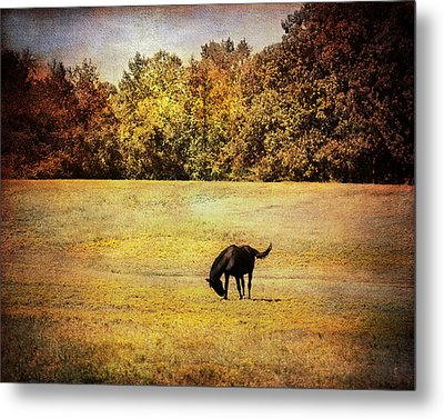 The Meadow Metal Print by Jai Johnson