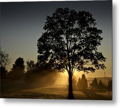 Metal Print featuring the photograph The Morning Light by Nick Mares