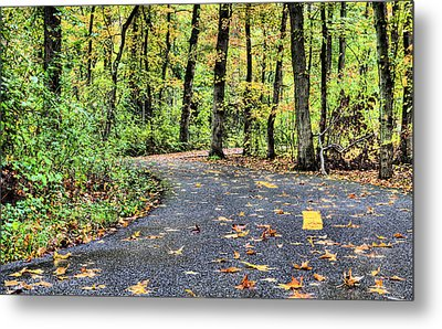 The Mount Vernon Trail. Metal Print by JC Findley