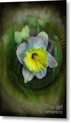 The Narcisstic Narcissus Metal Print by The Stone Age