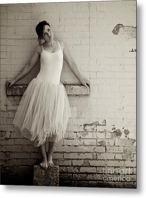 The Next Dance Metal Print by Sherry Davis