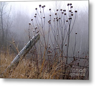 The Old Fence - Blue Misty Morning Metal Print