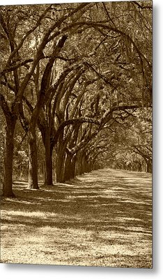 The Old South Series In Sepia Metal Print by Suzanne Gaff