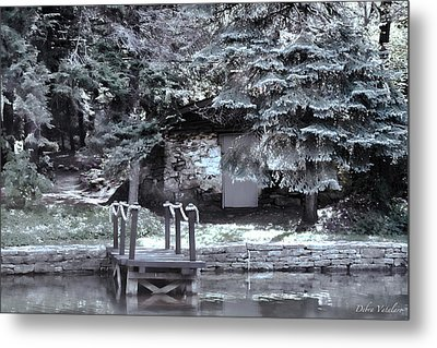 The Old Swimming Hole Metal Print by Debra     Vatalaro