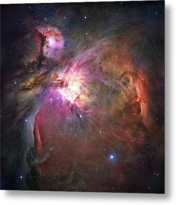 The Orion Nebula Was Born In Enormous Metal Print by Nasa