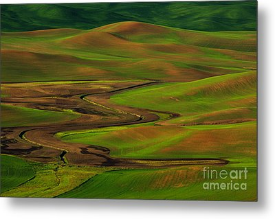 The Palouse Metal Print by Beve Brown-Clark Photography