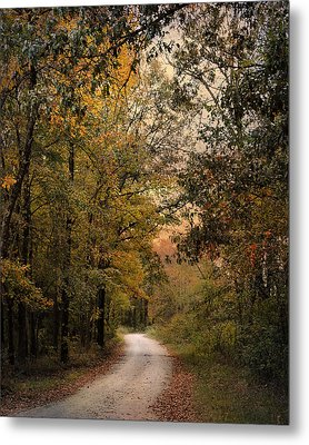 The Path Less Traveled 2 Metal Print by Jai Johnson