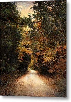 The Path Less Traveled Metal Print by Jai Johnson
