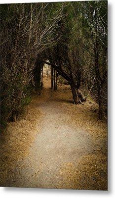 The Path Metal Print by Robert Martin