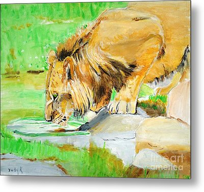 The Paws That Refreshes Metal Print by Judy Kay