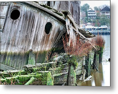 The Planter Metal Print by JC Findley