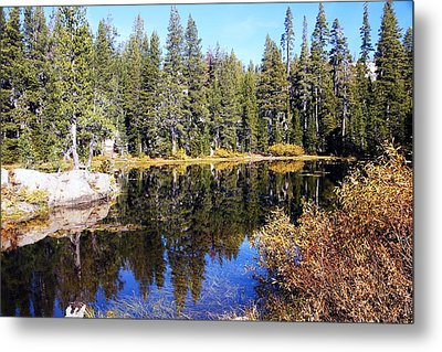 The Pond Metal Print by Michael Courtney