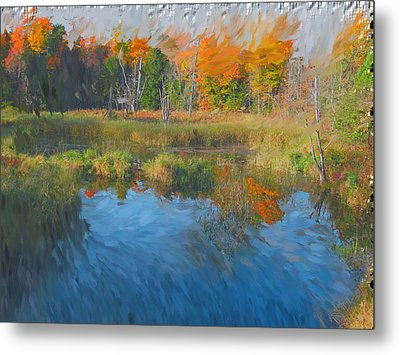 The Pond Next Door Metal Print by Mario Carini
