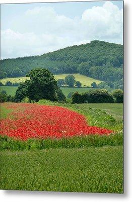 The Poppy Field. Metal Print by Debra Collins