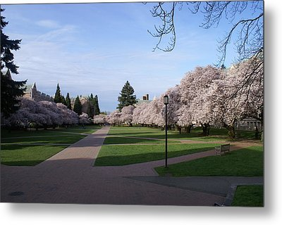 Metal Print featuring the photograph The Quad by Jerry Cahill