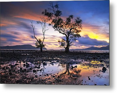 The Reflex Of Tree In Sunset Metal Print by Arthit Somsakul