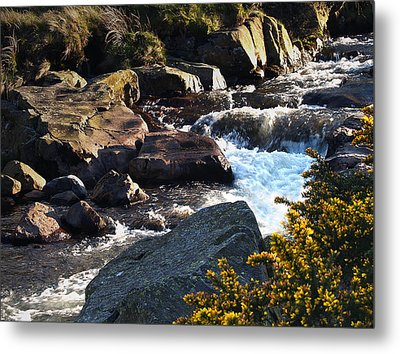 The River Caldew Metal Print