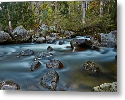 The River Wild Metal Print by Mark Lucey