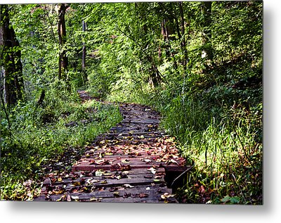 The Road Less Traveled Metal Print by Bill Cannon