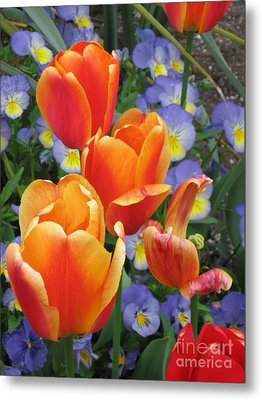 The Secret Life Of Tulips - 2 Metal Print by Rory Sagner