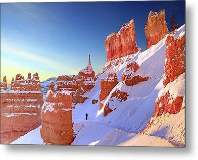 The Sentinal Bryce Canyon Metal Print by (C) Rob Little