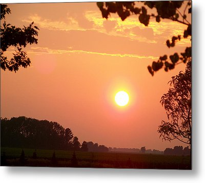 Metal Print featuring the photograph The Setting Sun by Robin Regan