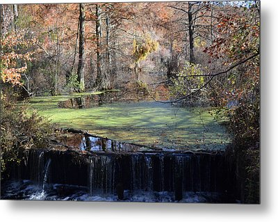The Side Of The Road Metal Print by Kelly Reber