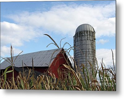 Metal Print featuring the photograph The Silo by Denise Pohl