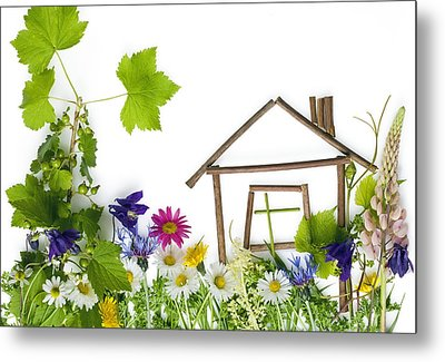 Metal Print featuring the photograph The Sweet Green Dream Home by Aleksandr Volkov