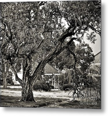 The Tree Which Moves ... Metal Print by Gwyn Newcombe